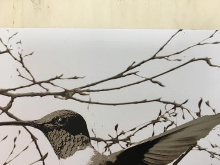 werbebanner plane weiss und bedruckt mit sperrholz pappel oder birke kleben kunstdruck. Black Bedroom Furniture Sets. Home Design Ideas